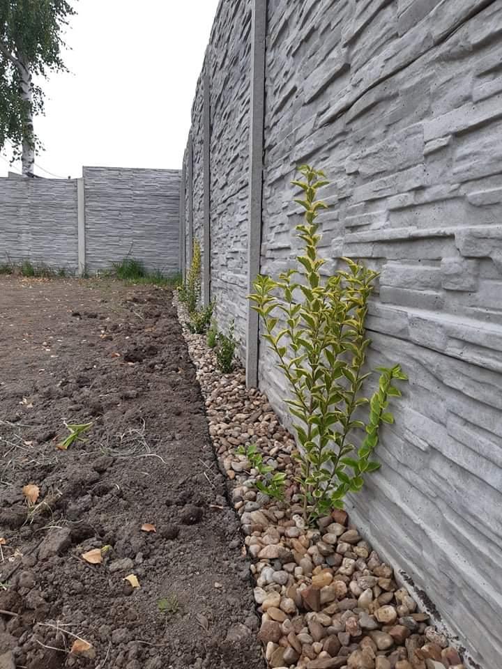 Zahrada a terasa - Obrázek č. 79