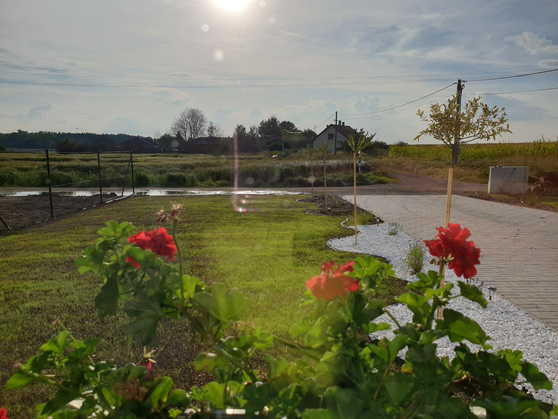 Zahrada a terasa - Obrázek č. 89